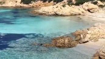 Ilha Caprera Na Itália, Veja Que Lugar Maravilhoso, Cheio De Natureza!
