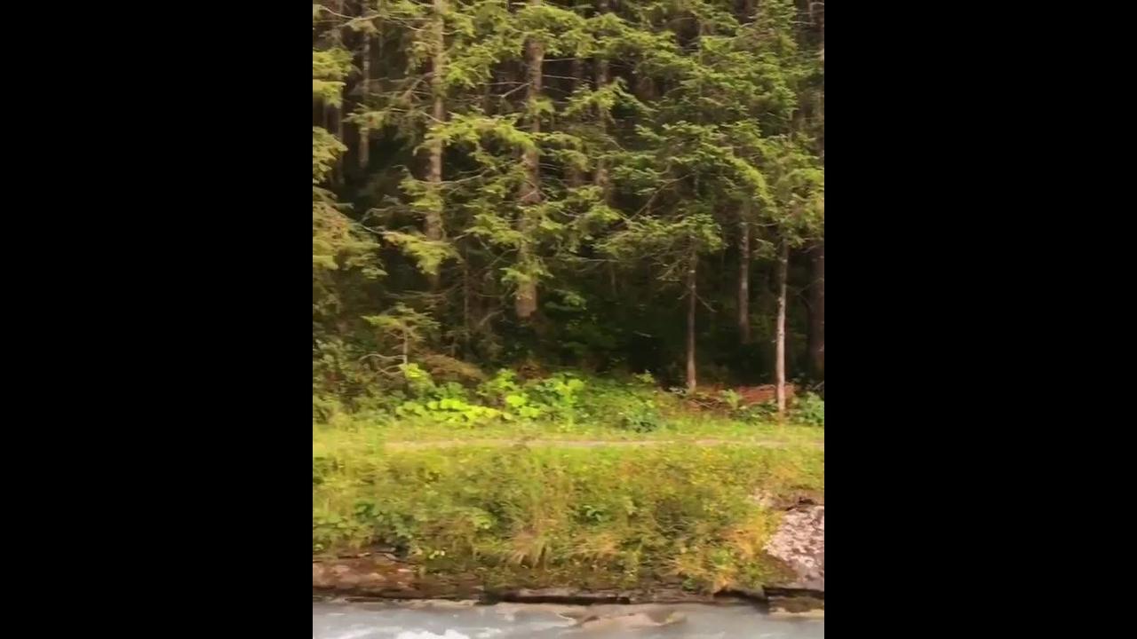 Imagens da natureza na Suíça