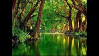 Imagens Da Natureza, Tem Todas Estações E Paisagens Maravilhosas!
