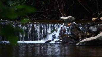Imagens De Água Caindo Na Natureza, Uma Cena Linda De Se Ver!