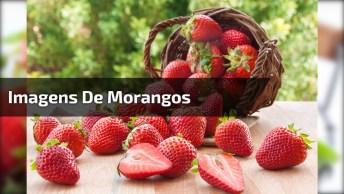 Imagens De Morangos, As Frutas Ricas Em Vitamina C, Fortalecendo As Defesas!