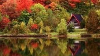 Lugares Onde A Natureza Reina Com Sua Espetacular Beleza, Confira!