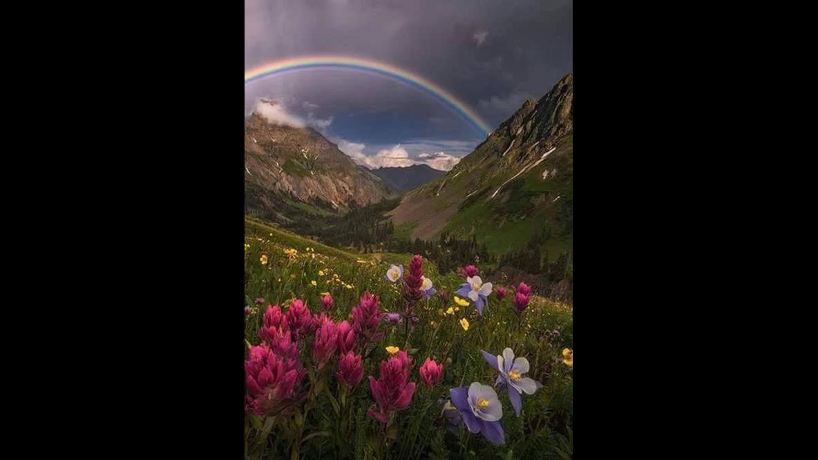 Momento de apreciar nossa exuberante natureza, veja que lindas imagens!!!