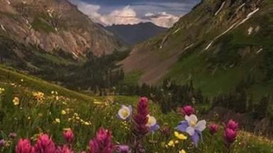 Momento De Apreciar Nossa Exuberante Natureza, Veja Que Lindas Imagens!
