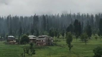 Montanha No Paquistão Rodeada Por Lindos Pinheiros E Muito Verde!