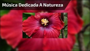 Música Dedicada A Natureza, Com Lindas Imagens, Confira!
