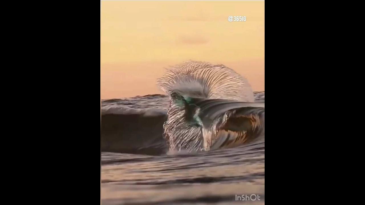 Natureza espetacular, veja a onde do mar em câmera lenta