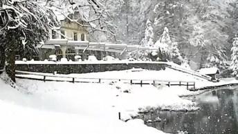 Neve Caindo, Como É Lindo Cada Estação Do Ano, Cada Uma Com Sua Singularidade!