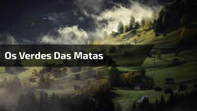 Os Verdes Das Matas Vistos Lá De Cima, Você Vai Amar Esse Vídeo!