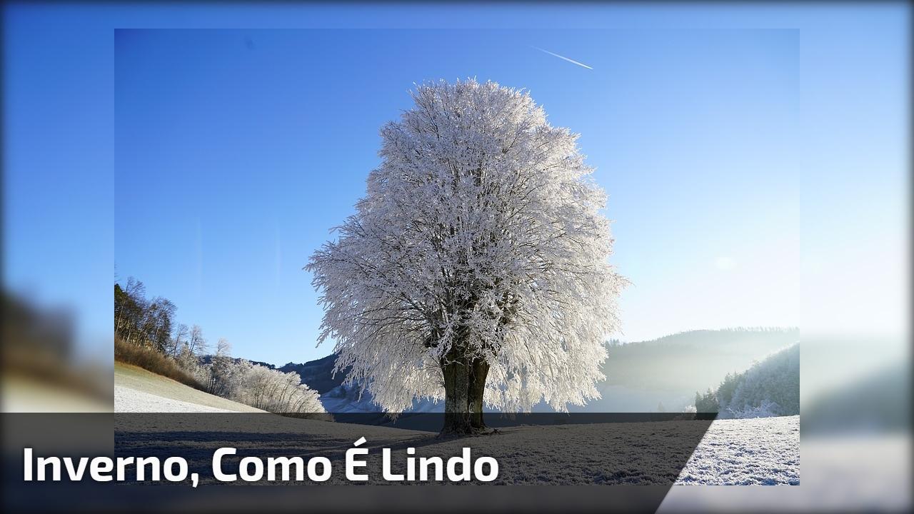 Inverno, como é lindo