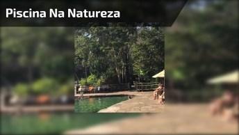 Piscina No Meio Da Natureza Para Relaxar, Da Só Uma Olhada!