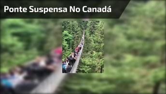 Ponte Suspensa No Canadá, Teria Coragem De Atravessar Ela?