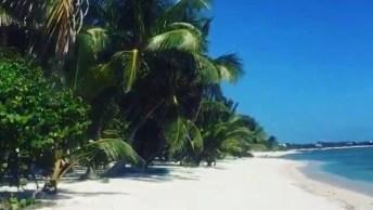 Praia Em Tulum, Olha Só Que Lindo Este Lugar, A Natureza É Linda!