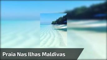 Praia Nas Ilhas Maldivas, Veja Que Água Clarinha Perfeita Para Um Belo Mergulho!