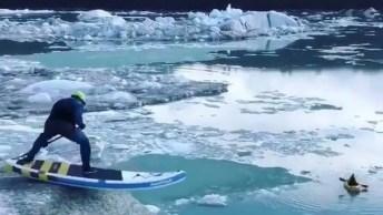 Surfando No Alasca, Será Que Está Frio Neste Lugar? Confira!