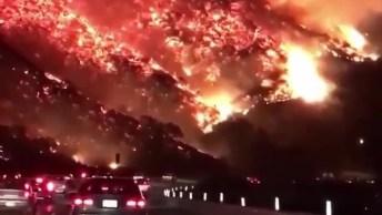 Trágico Incêndio Na Califórnia, Um Desastre Na Natureza Assustador!