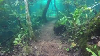 Trilha Fica Submersa Pela Água Após Chuva, Que Resultado Surpreendente!