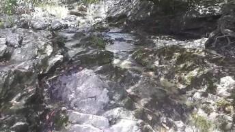 Um Pequeno Riacho De Nossa Linda Mãe Natureza, Água É Vida!