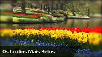 Vídeo Com As Mais Belas Fotos De Jardins, A Natureza É Belíssima!