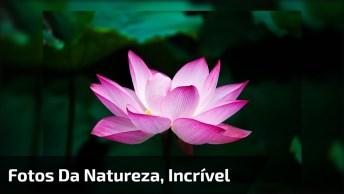 Vídeo Com Fotos Da Natureza, Nosso Planeta É Magnifico, Lindo Demais!