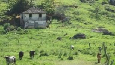 Vídeo Com Fotos Da Vida Na Roça, Onde A Natureza E O Homem Andam Lado A Lado!