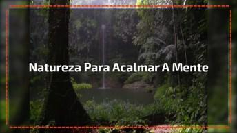 Vídeo Com Linda Imagem Da Natureza E Sons Relaxantes Para Acalmar A Mente!