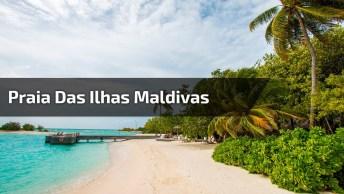 Vídeo Com Linda Praia Das Ilhas Maldivas, Confira Este Lindo Lugar!