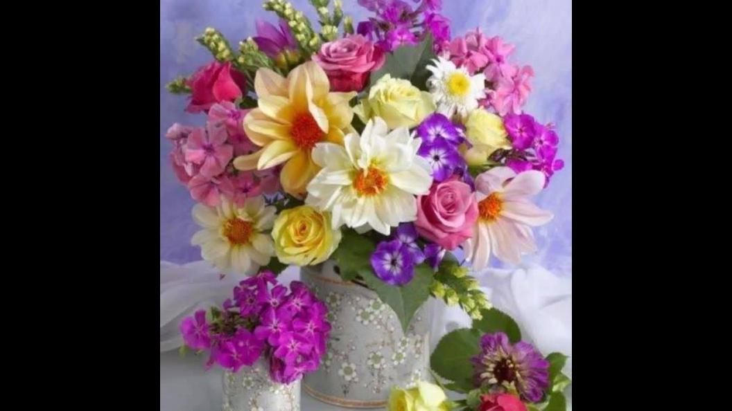 Vídeo com lindas fotos de flores, são elas de que dão cor a nossa natureza!!!