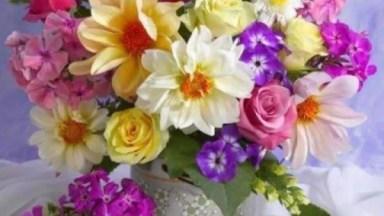 Vídeo Com Lindas Fotos De Flores, São Elas De Que Dão Cor A Nossa Natureza!