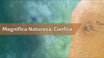 Vídeo Com Lindas Imagens De Nossa Magnifica Natureza, Veja Que Lindo!
