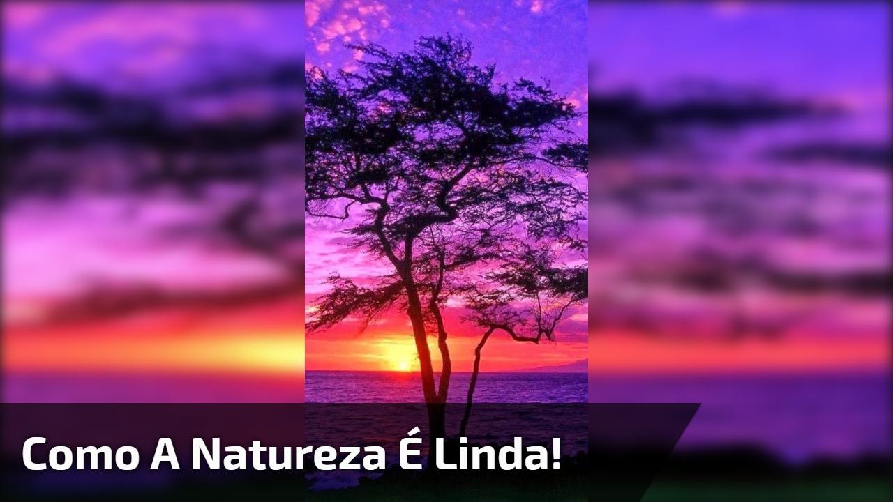 Vídeo com lindas imagens do por do sol! Como a natureza é linda!!!