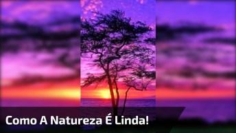 Vídeo Com Lindas Imagens Do Por Do Sol! Como A Natureza É Linda!