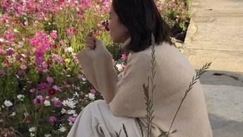 Vídeo Com Lindo Campo De Flores, Simplesmente Maravilhoso O Lugar!