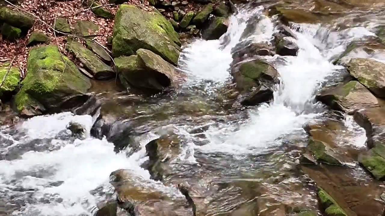 Vídeo com lindo riacho, a natureza é maravilhosa