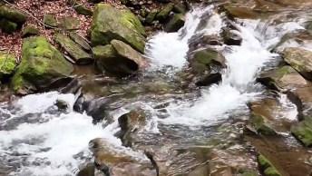 Vídeo Com Lindo Riacho, A Natureza É Maravilhosa, Vale A Pena Conferir!