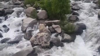 Vídeo Com Lindo Riacho, A Natureza É Maravilhosa, Vamos Conserva-La!