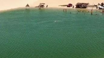 Vídeo De Pessoas Escorregando Na Areia, Bora Se Divertir Um Pouco!