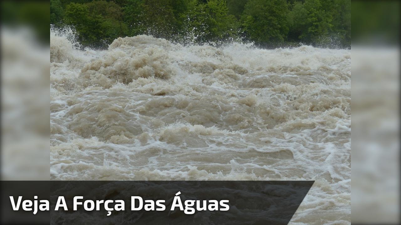 Veja A força das águas