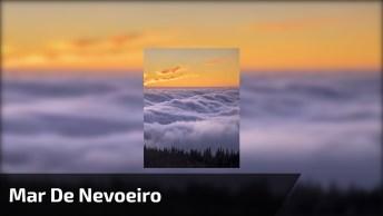 Vídeo Mostrando Mar De Nevoeiro Na Califórnia, A Natureza É Espetacular!