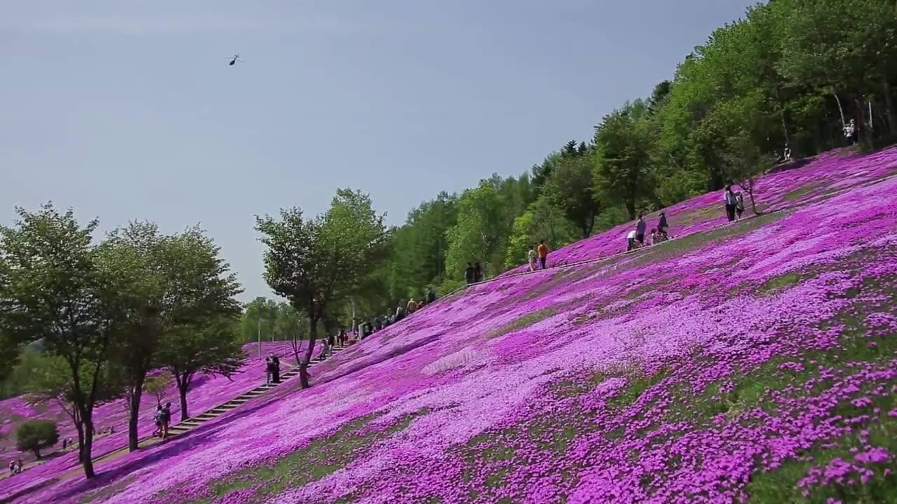 Vídeo mostrando o lindo parque em Tatebayashi no Japão
