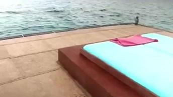 Vídeo Mostrando Quarto Subaquático Que Fica Em Pemba Na Tanzânia!