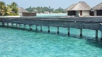 Vídeo Mostrando Resort Nas Ilhas Maldivas, Olha Só Que Lugar Lindo!