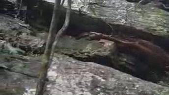 Vídeo Mostrando Um Pouquinho Da Cachoeira Buraco D Padre Em Ponta Grossa!