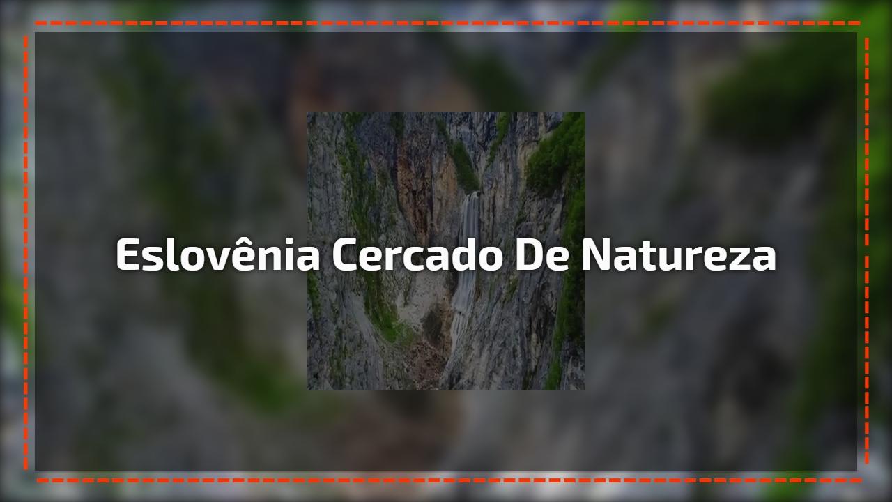 Eslovênia cercado de natureza