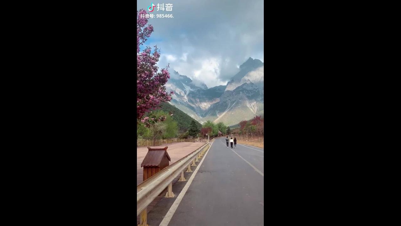 Vídeo para apaixonados por natureza
