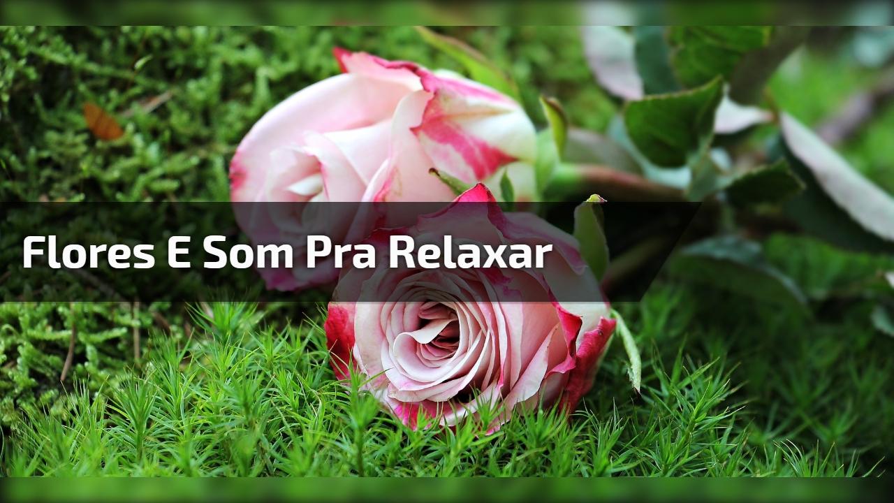 Flores e som pra relaxar