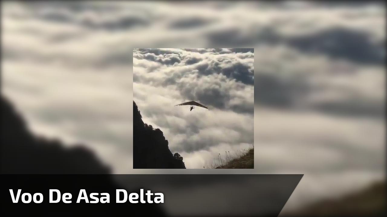 Voo de asa delta