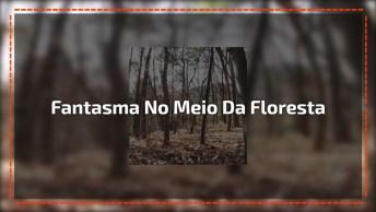 Câmera Flagra Aparição De Fantasma No Meio Da Floresta, A Imagem É Assustadora!