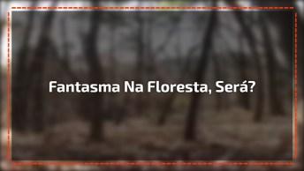 Fantasma É Flagrado Em Uma Floresta, Não Assista Esse Vídeo Se Estiver Sozinho!