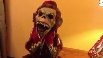 Feliz Halloween! Que Macaquinho Assustador, Ótimo Para Assustar Os Amigos, Kkk!